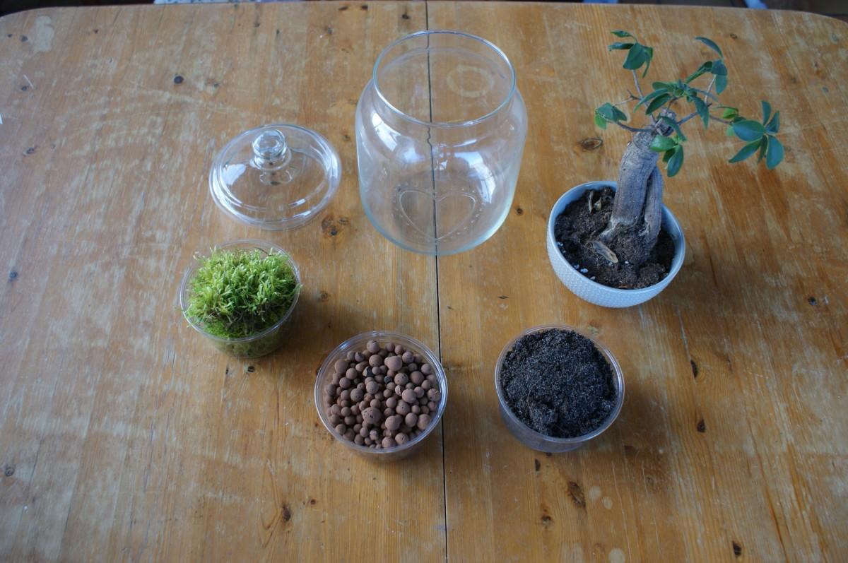 Un mois, un projet : mon Terrarium…