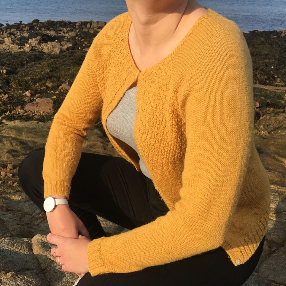Mon gilet Automne – l'histoire d'un tricot.